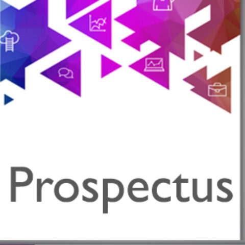 Writing a Business Prospectus